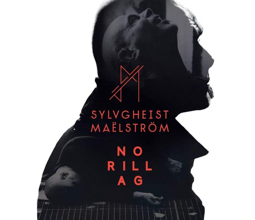 SYLVGHEIST MAËLSTRÖM feat Moogulator Track Collab