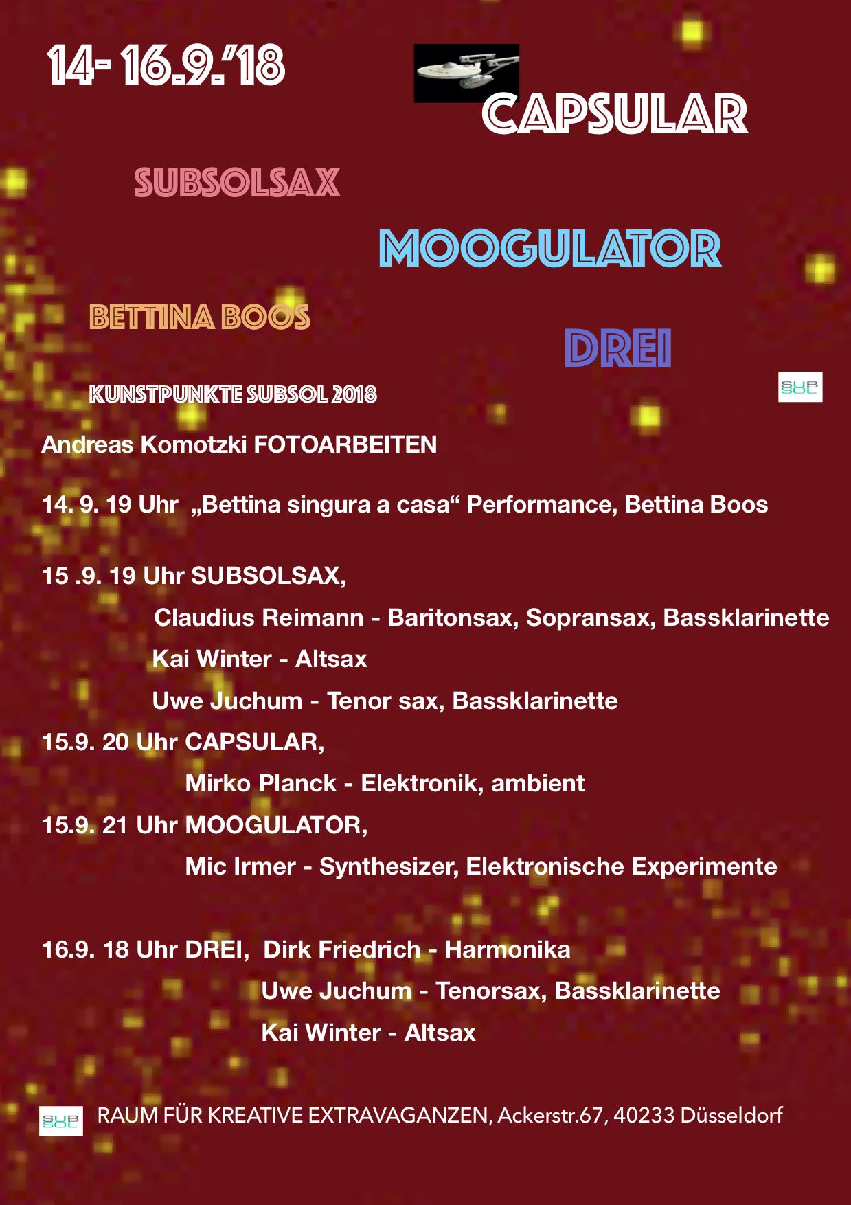 Kunstpunkte 15. Moogulator / Capsular