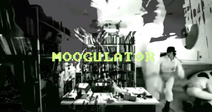 LSB TV Moogulator