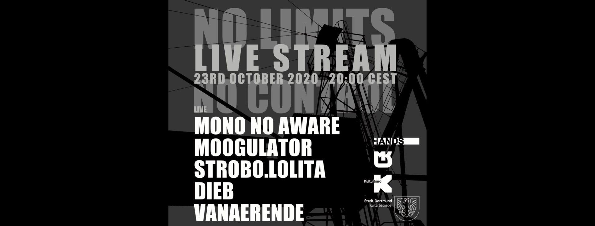 No Limits No Control Moogulator